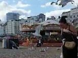 Dive-bombing seagulls chase woman on Brighton beach and steal all her fries
