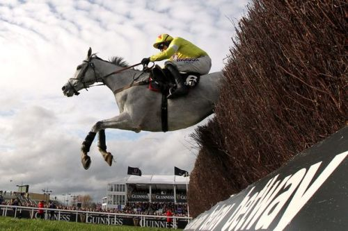 ITV Racing tips today: Best bets for Ascot, Haydock and Taunton