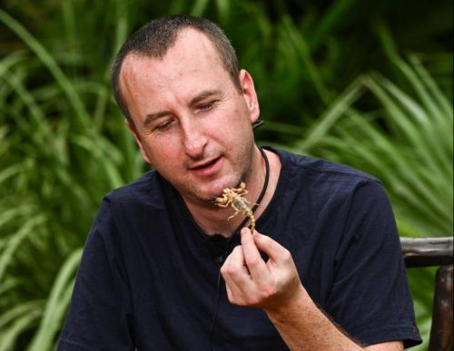 Could I'm A Celebrity's Bushtucker trials face axe this year thanks to UK animal welfare laws?
