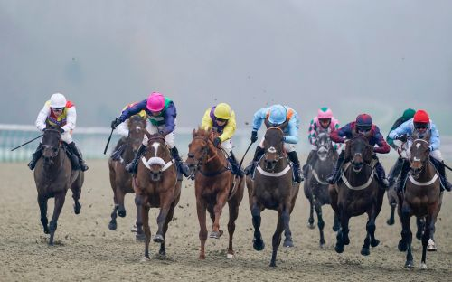 Marlborough racing tips and best bets for Monday, January 18