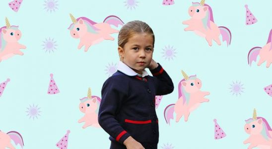 Princess Charlotte 'Loves Unicorns, Loves Them' - Here Are 5 Toys She'd Adore