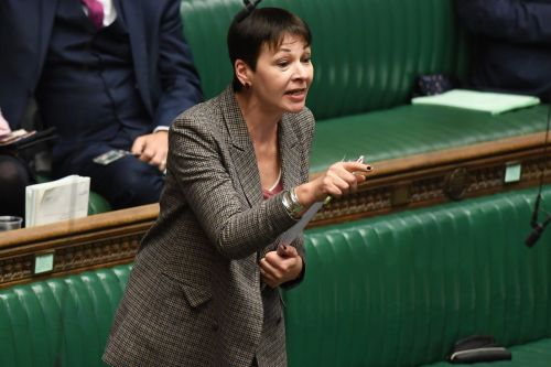 Caroline Lucas investigated over breach of Parliament tour rules