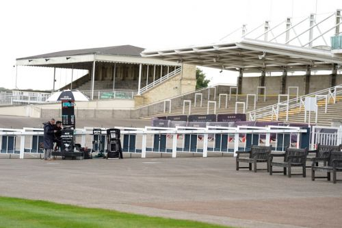 BHA chair Annamarie Phelps vows to do everything she can to get crowds back on racecourses