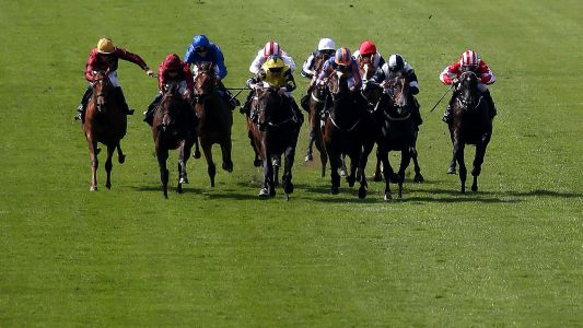 Through The Card: Newmarket, Saturday 22 September