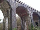 Man with last song syndrome jumped to death from 83ft viaduct