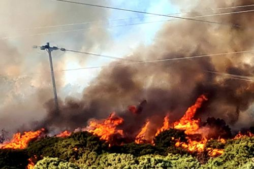 Dramatic footage sees wildfire rip through Scots countryside near A9