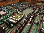 Coronavirus 'hotbed' Parliament rushes to set up Zoom-style secure video system