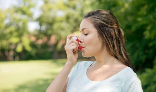 Pollen count today: Is the count high? Three steps to reduce your risk of an asthma attack