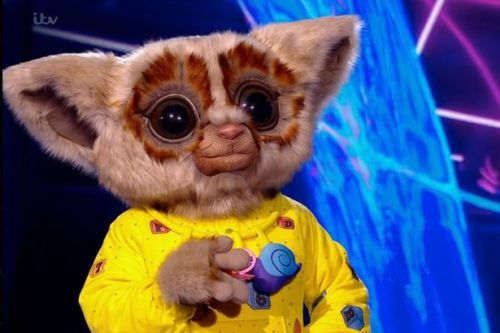 The Masked Singer's Bush Baby unmasked as Corrie actor leaving judges stunned