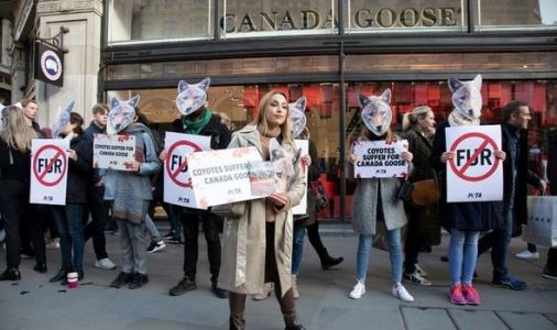 Brexit to improve UK standards as Boris eyes outright ban on fur sales post EU transition