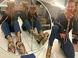 Rita Ora exudes style in snakeskin-print boots and tight black tee