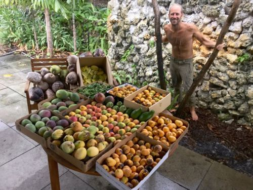 Man gives up groceries and forages all his food for free for a year