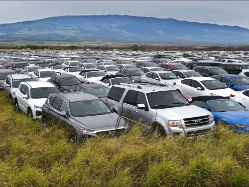 Photos show rows of thousands of rental cars parked in a Hawaiian sugar cane field after the coronavirus pandemic halted tourism