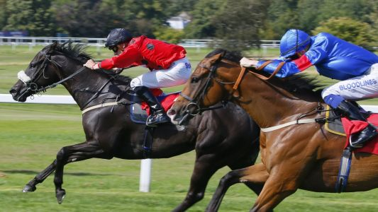 Today's Horse Racing Tips: Liberty Beach can get Sunday off to a flyer