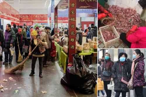 Coronavirus research suggests it did start in Wuhan food market animals, says China