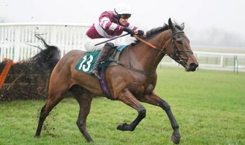 Horse racing tips today: Latest tips from Chelmsford, Bangor, Cheltenham and more
