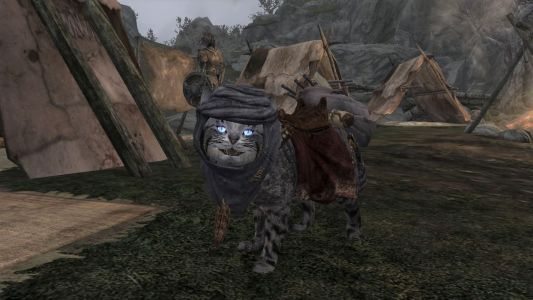 New Skyrim mod lets you add Khajiit cat followers - and they're adorable