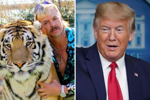 Donald Trump vows to 'look at' Tiger King Joe Exotic's prison sentence