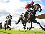 Betting giants Flutter, Bet 365 and William Hill in tax haven row