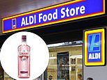 Stranger hailed 'hero' after letting homeschooling mum take the last bottle of pink gin at Aldi