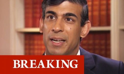 Rishi Sunak warns 'hard times are here' as UK plunges into devastating recession