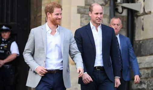 Prince Harry made 'baby step' to healing rift with Prince William at Philip's funeral