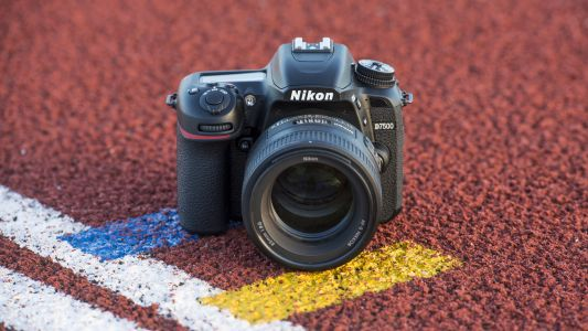 Best DSLR camera 2019: 10 great cameras to suit all budgets