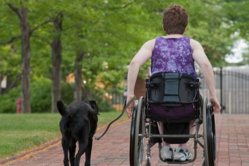 Disabled charities who support to millions could close without emergency funds