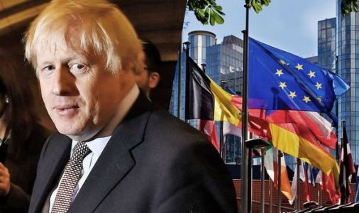 Brexit warning: How Boris will struggle to strike full EU trade deal in 2020 - revealed