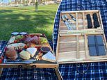 Mother uses two $15 Kmart tray tables to build an ingenious picnic 'basket'