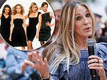Sarah Jessica Parker drops BOMBSHELL theory about Sex and the City