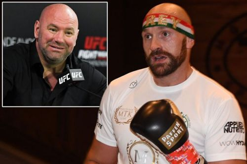 Tyson Fury sends message to Dana White urging him to get in the Octagon for UFC fight