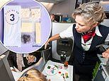 Would-be tourists forced to cancel vacations amid COVID-19 pandemic are now ordering AIRLINE FOOD