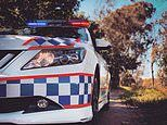Bowenville crash: Woman dies after truck and car smash on the the Warrego Highway