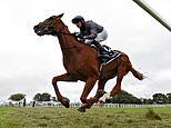 Robin Goodfellow's racing tips: Best bets for Tuesday, July 7