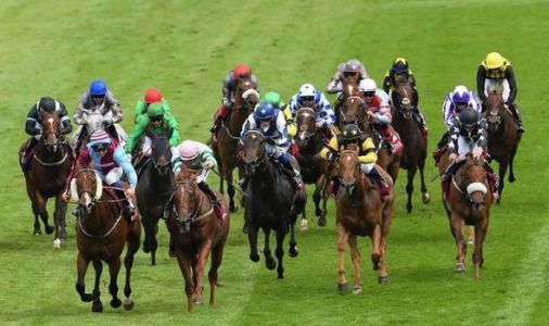 Horse racing tips today: Horses you must back at Goodwood, Newmarket, Chelmsford, Windsor