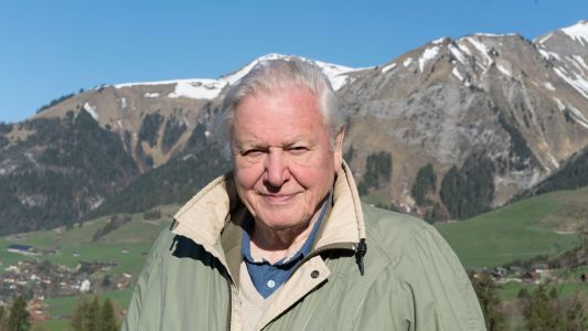 David Attenborough to unveil new one-off documentary at Royal Albert Hall in 2020