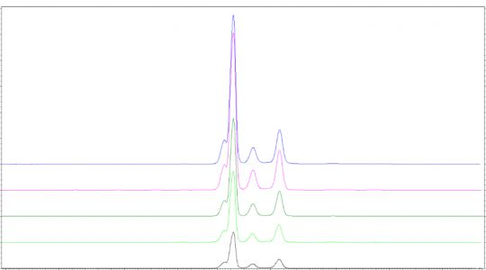 CE and HPLC applications for rAAV characterisation