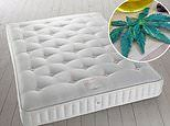 John Lewis are selling 100 percent recyclable mattress filled with cannabis