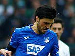 Arsenal, Southampton and Newcastle 'interested in £21m Hoffenheim midfielder Florian Grillitsch'