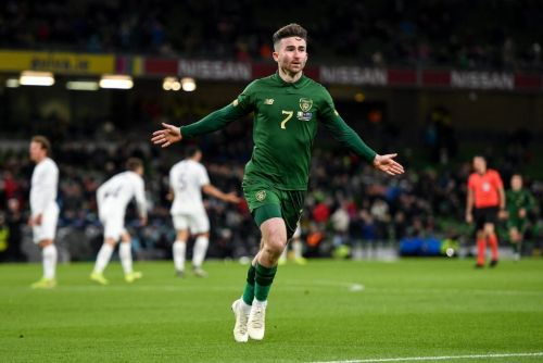 Ireland fans delight as Troy Parrott tees up Seani Maguire for stunning first international goal against New Zealand