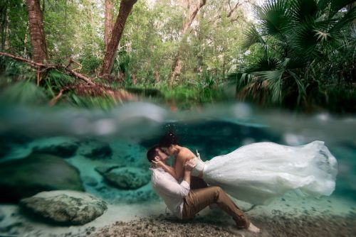 A breathtaking picture of newlyweds kissing underwater just won a major photography award