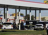 Tyler Timmins: Illinois cop is shot dead after approaching a suspected stolen truck