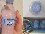 Mum reveals how a water bottle is the secret to making your toilet smell amazing