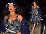 Rihanna looks radiant as she dons head-to-toe Dior for dinner with her friends in Santa Monica