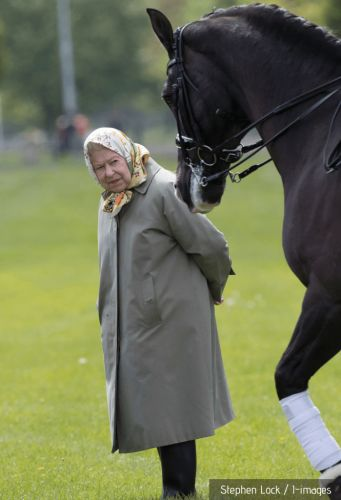 The Queen and horse racing - an extraordinary success story of 530 winners and £7.5m in prize money