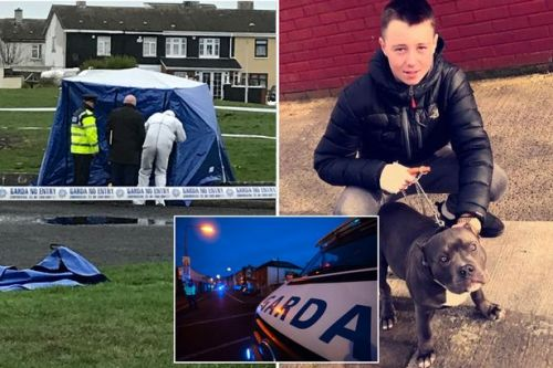 Gang war that led to brutal murder of Irish teen 'won't end until 3 more killed'