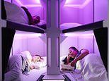 Air New Zealand's incredible 'Skynest' beds allowing passengers in ECONOMY to lie down flat
