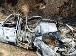 Pensioner burns down 673 hectares of Brazilian rainforest by setting car alight in insurance scam