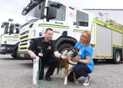 Peterhead charity donates pet oxygen kits to region's fire stations